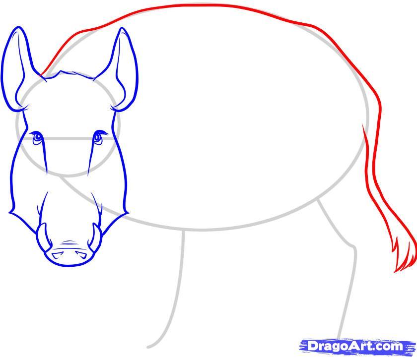 Рисуем дикого кабана - фото 5