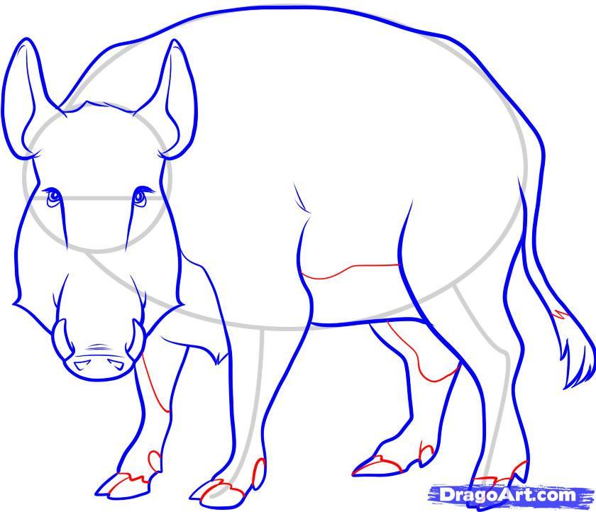 Рисуем дикого кабана - фото 8