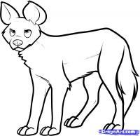 Фото дикую Африканскую собаку карандашом