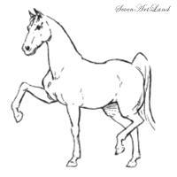 дрессированную Лошадь карандашом