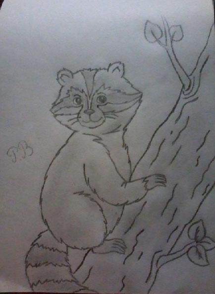 Рисуем енота на дереве простым