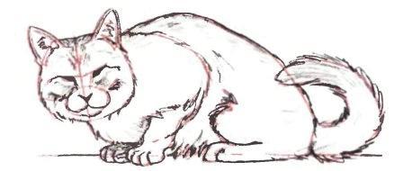 Нарисовать кошку лежащую поэтапно