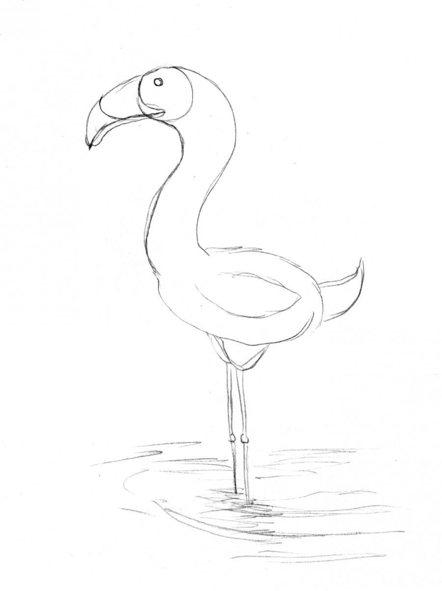Рисуем фламинго по памяти - шаг 1