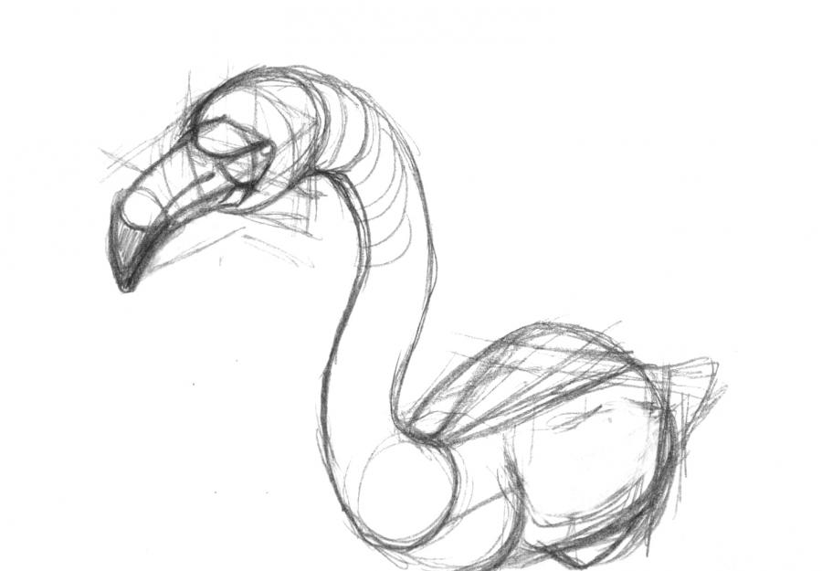 Рисуем фламинго по памяти - шаг 11
