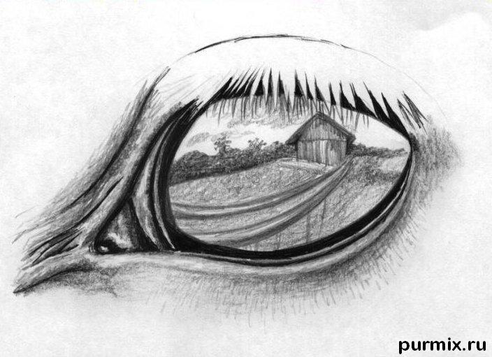 рисунки лошадей карандашом красивые картинки
