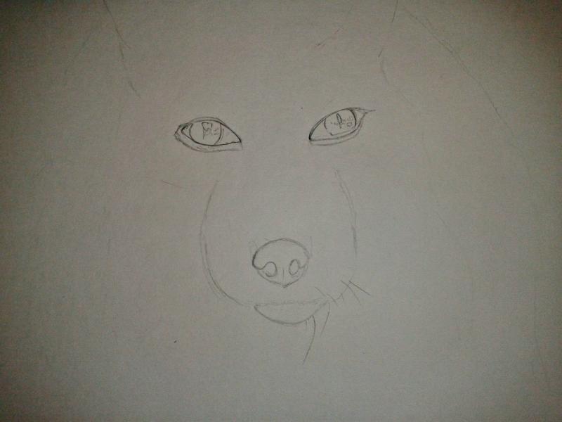 Рисуем голову лисы - шаг 1