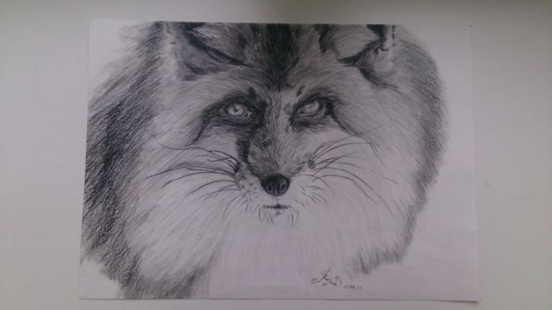 Рисуем голову лисы - шаг 12