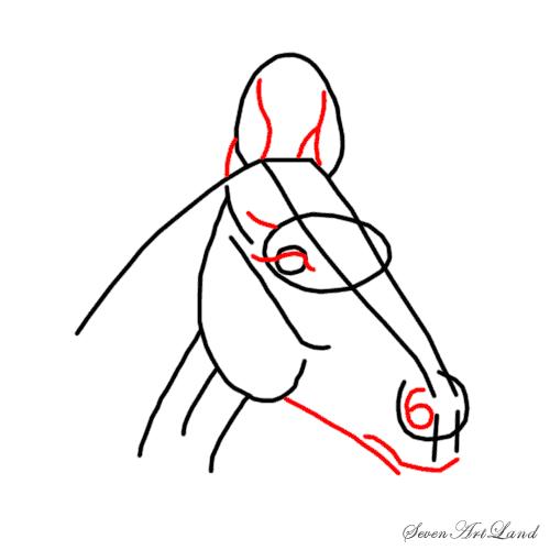 Рисуем голову лошади - шаг 4