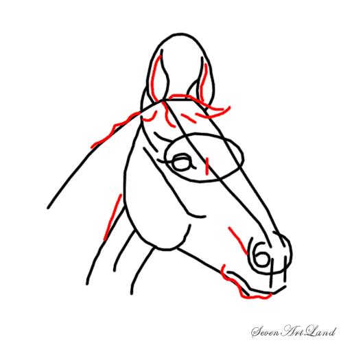 Рисуем голову лошади - шаг 5