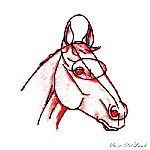 Рисуем голову лошади - шаг 6