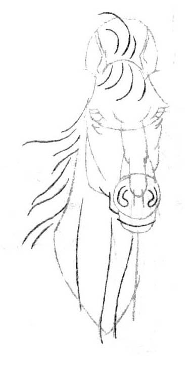 Рисуем голову лошади в анфас - шаг 5
