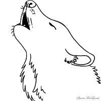 Рисунок голову воющего волка
