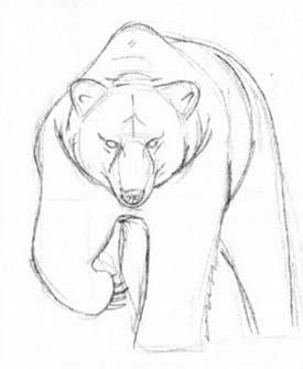 Рисуем идущего медведя