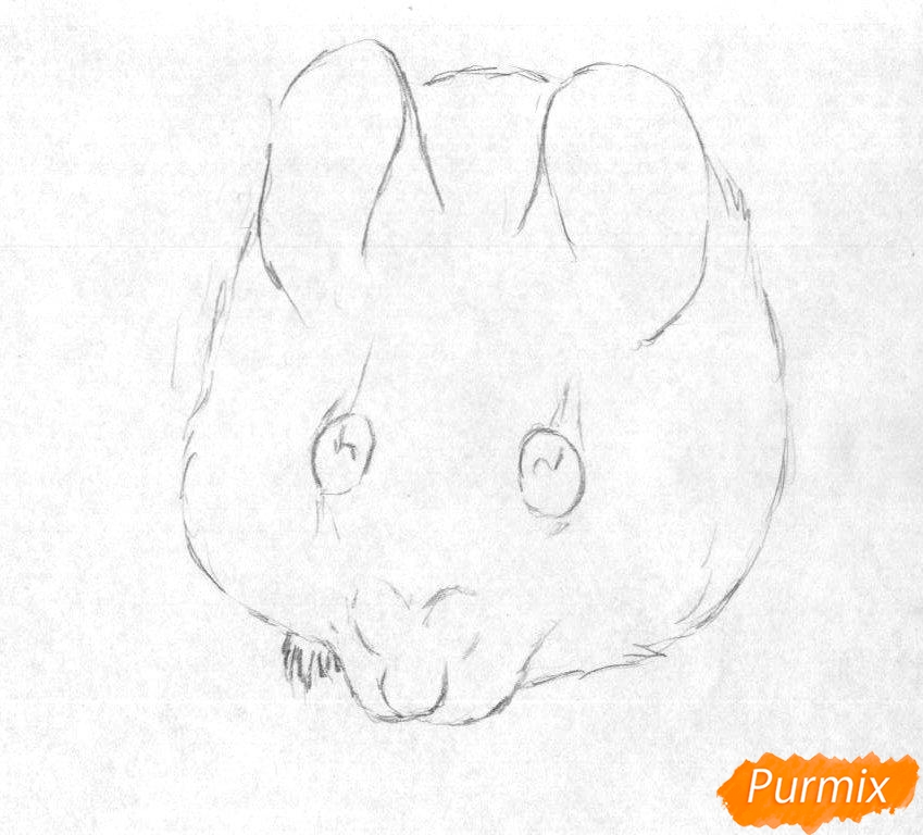 Рисуем иглистую мышь  и ручкой - шаг 1