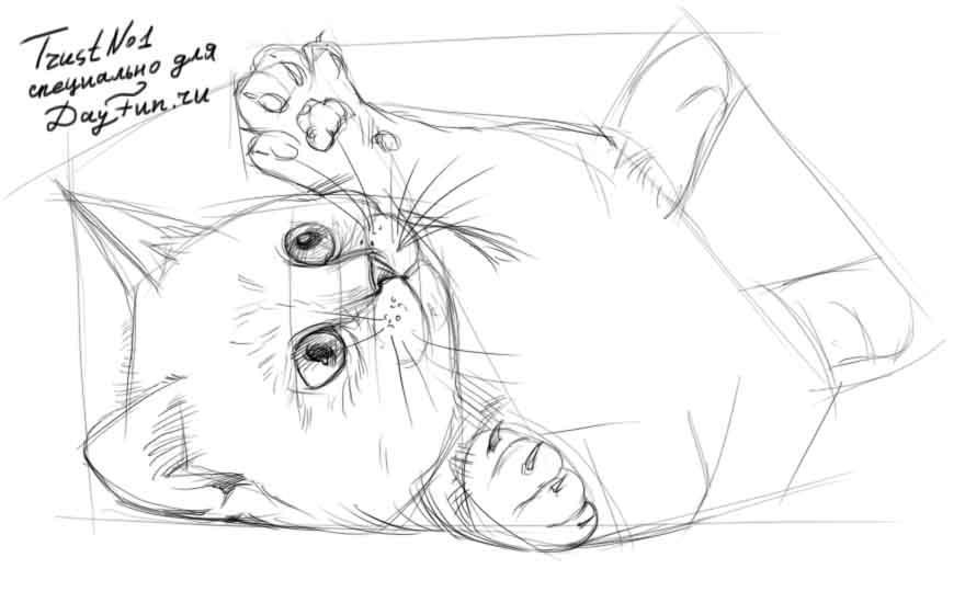 Рисуем играющегося котенка - шаг 3
