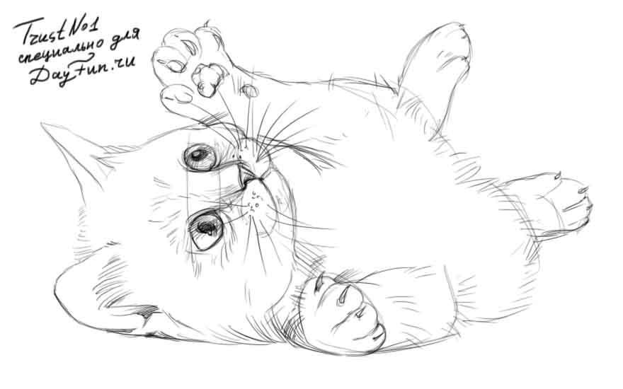 Рисуем играющегося котенка - шаг 4