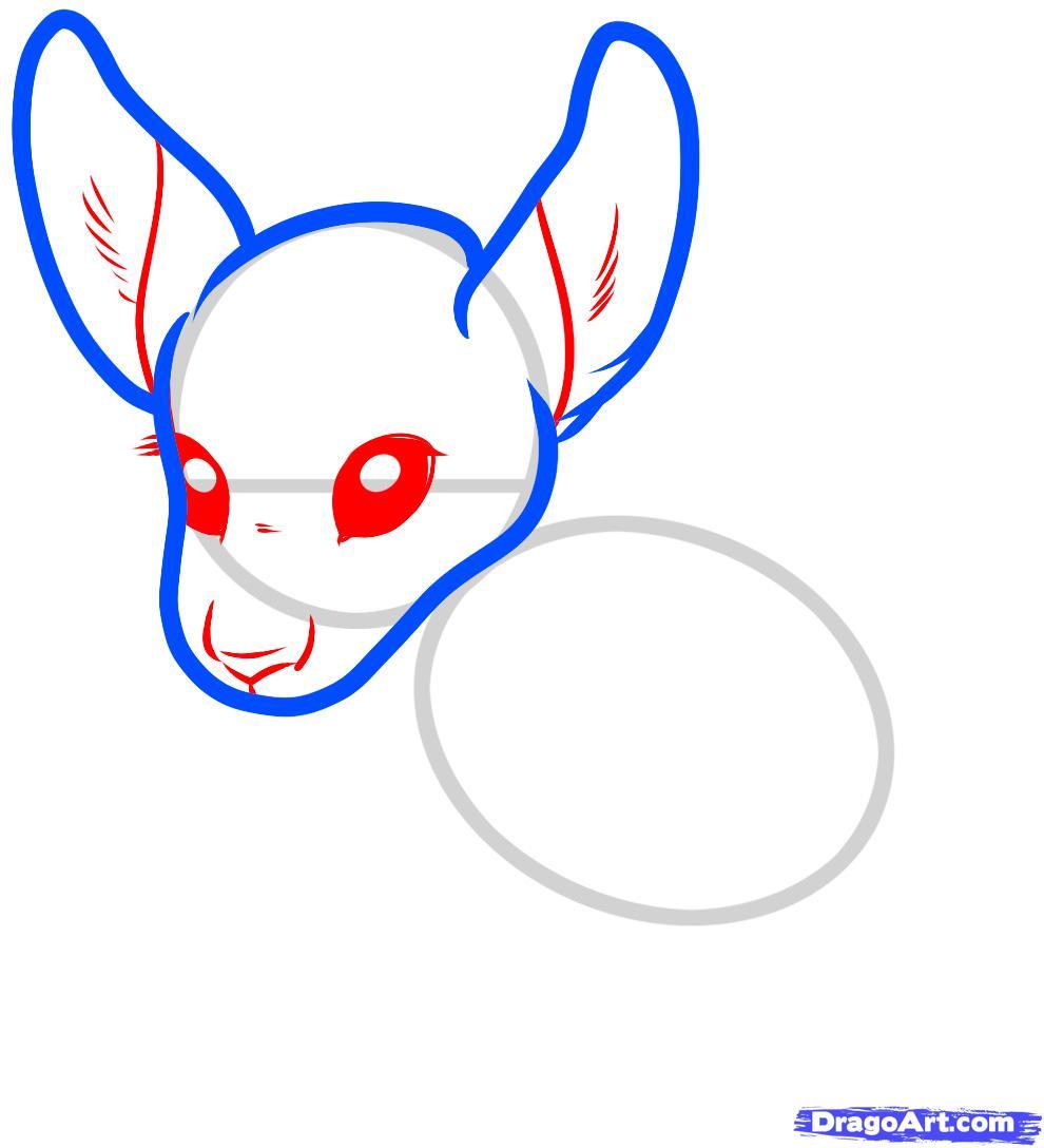 Как нарисовать Кенгуренка карандашом поэтапно