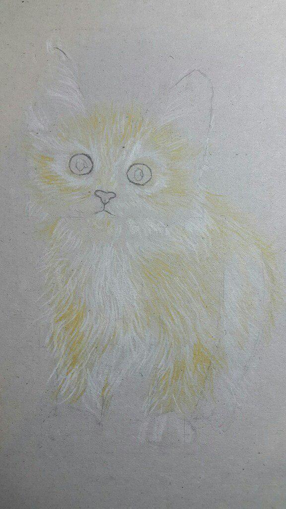 Рисуем милого котенка цветными карандашами - шаг 3