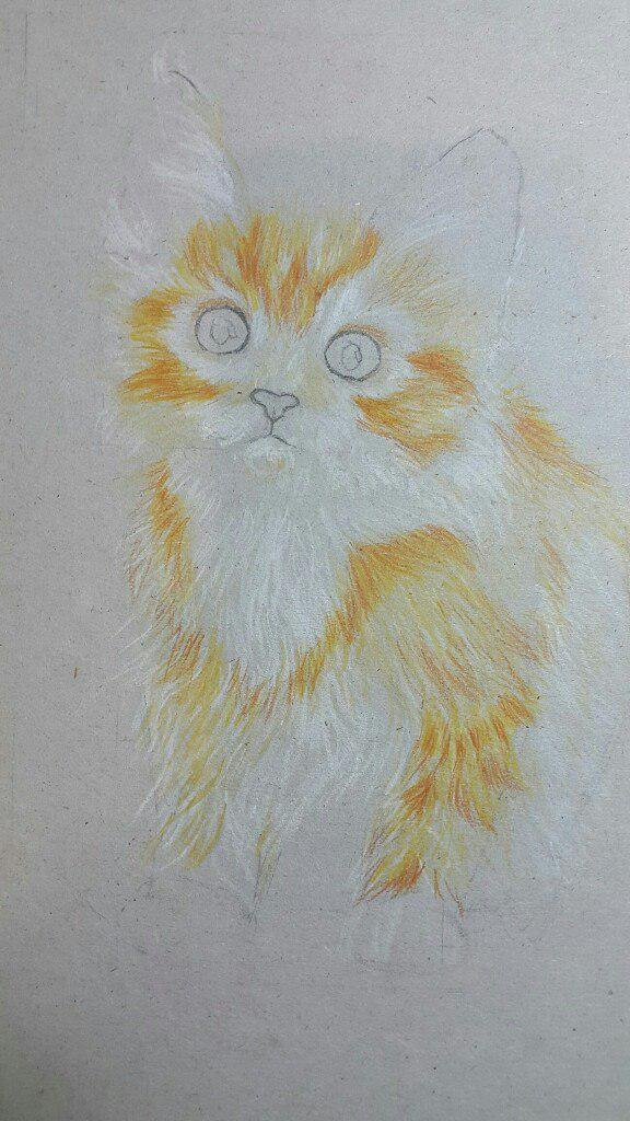 Рисуем милого котенка цветными карандашами - шаг 4