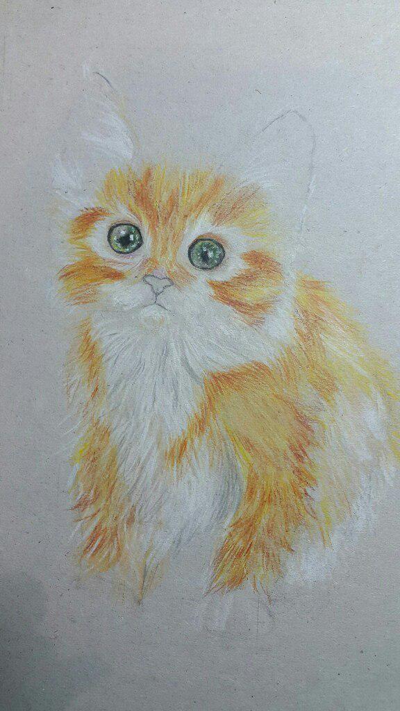 Рисуем милого котенка цветными карандашами - шаг 5