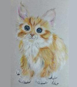 Фото котенка цветными карандашами