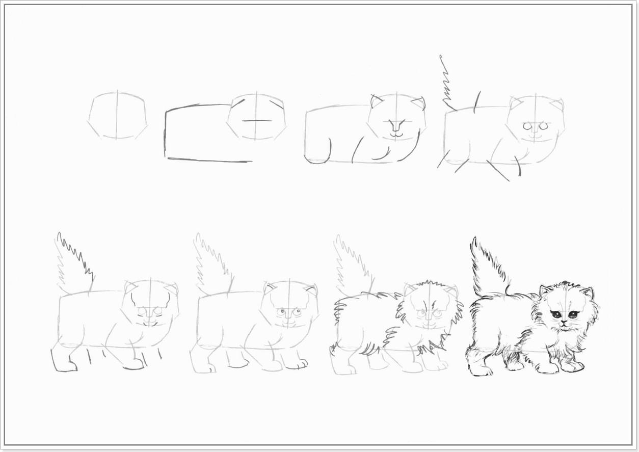 Как легко нарисовать котенка - шаг 1