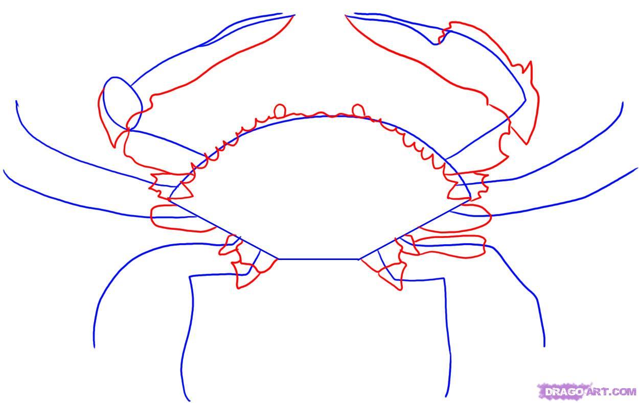 Рисуем краба - фото 2