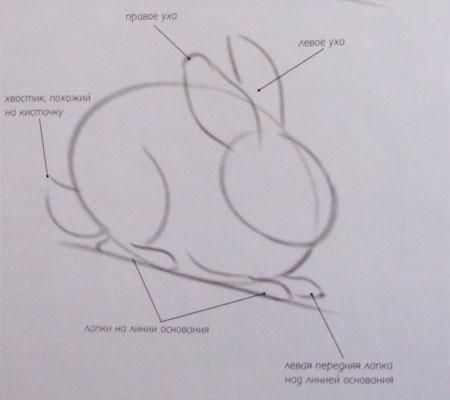 Рисуем кролика карандашами - шаг 2