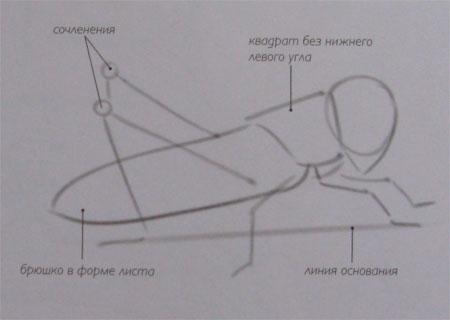 Как нарисовать саранчу поэтапно