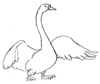 Рисуем лебедя на бумаге - шаг 4
