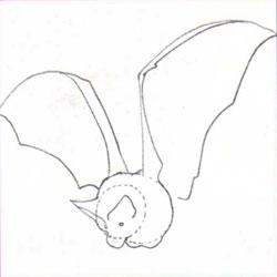 Рисуем летучую мышь - фото 2