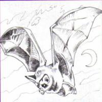 летучую мышь карандашом