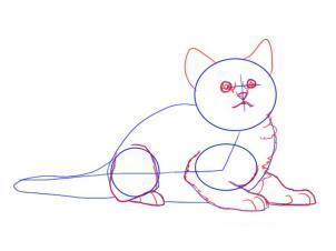 Как просто нарисовать лежащего котенка - шаг 5