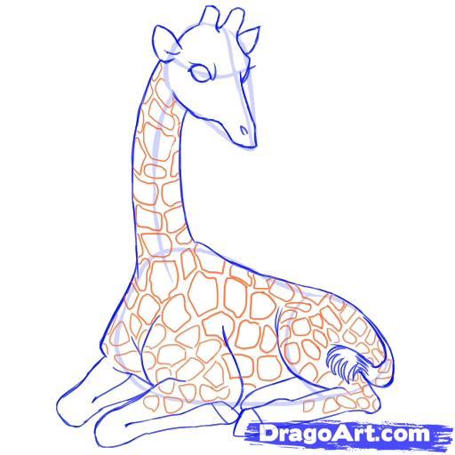 Рисуем лежащего жирафа - шаг 8