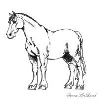 Лошадь Клейдесдальской породы карандашом
