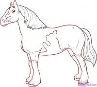 лошадь в полный рост карандашом