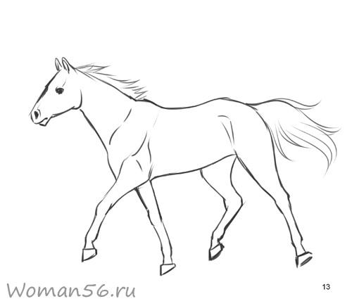 Рисуем лошадь в движении