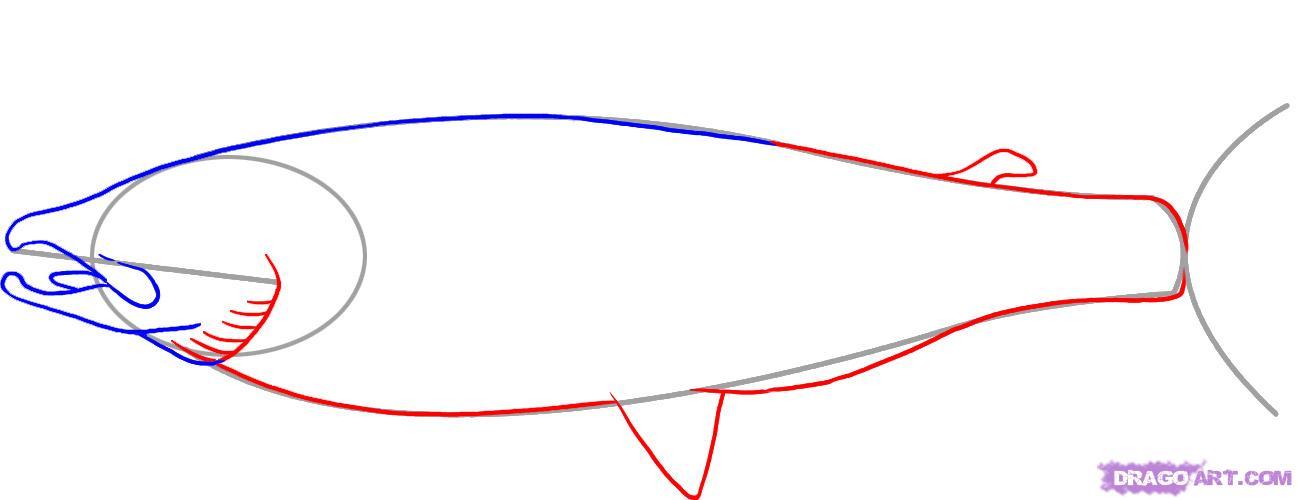 Рисуем лосося