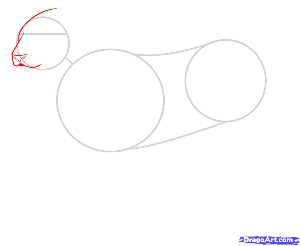 Рисуем Львицу - шаг 2