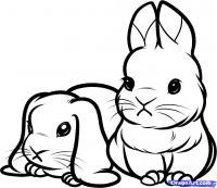 Как нарисовать маленьких кроликов, зайчиков поэтапно