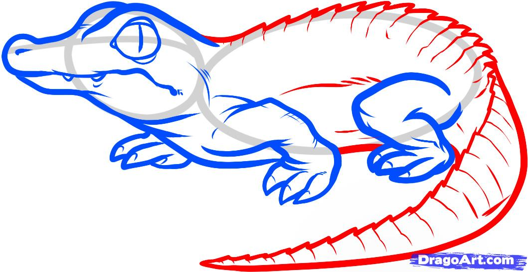 Рисуем маленького Крокодильчика - шаг 5
