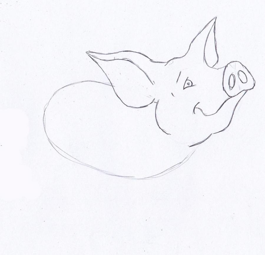 Рисуем маленького поросенка - фото 2