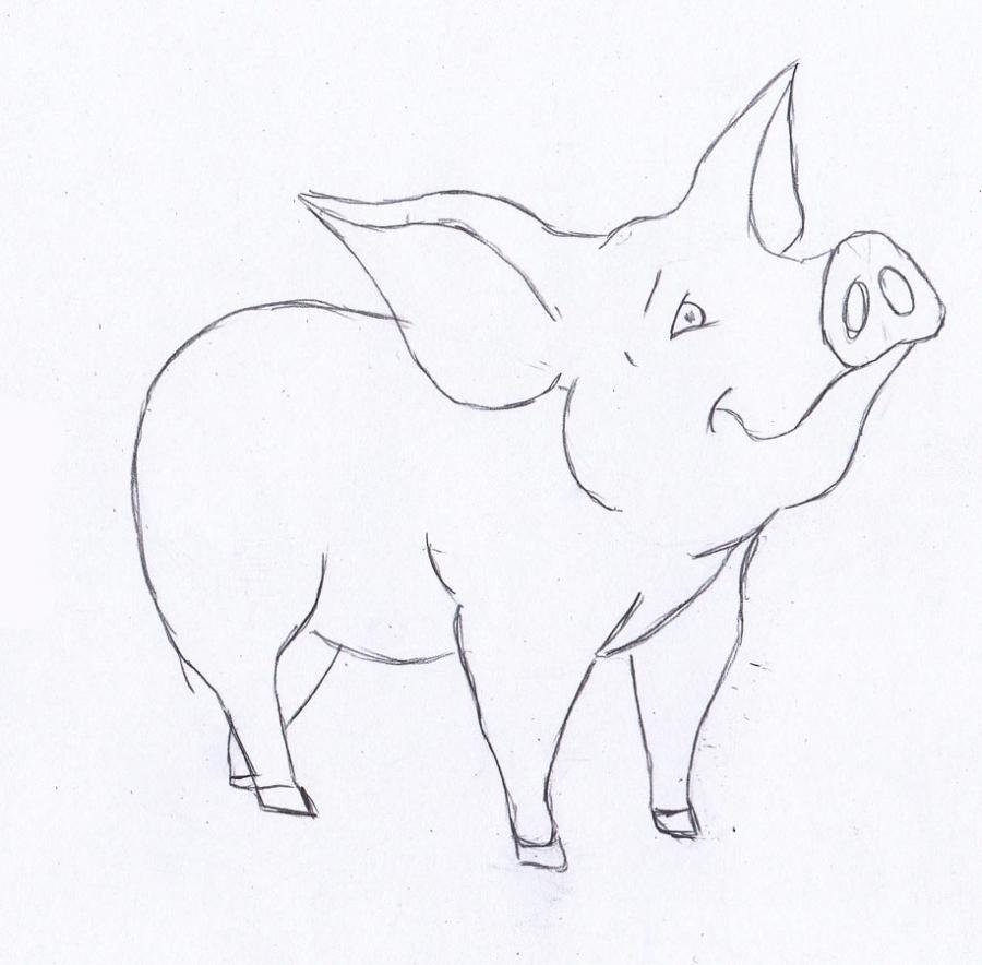 Рисуем маленького поросенка - фото 3