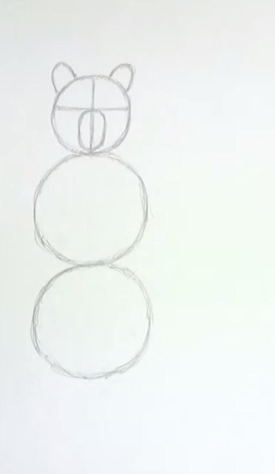 Рисуем медведя стоящего на задних лапах - шаг 1