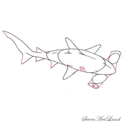 Рисуем молотоголовую акулу - фото 5