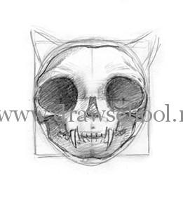 Рисуем мордочку кошки простым - шаг 4