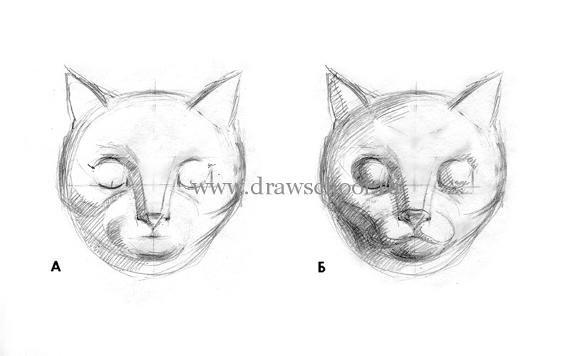 Рисуем мордочку кошки простым - шаг 5