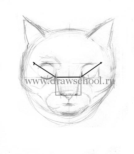 Рисуем мордочку кошки простым - шаг 6