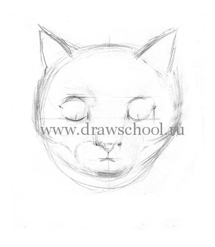Рисуем мордочку кошки простым - шаг 7