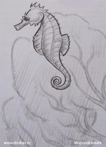 Рисуем морского конька - шаг 4